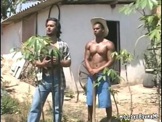 Young gay city dweller got banged by two cowboys | banged  gays tube  two movie  young man