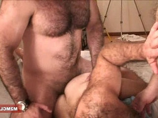 Muscle bears barebacking | amateur   bareback   bears best   muscular